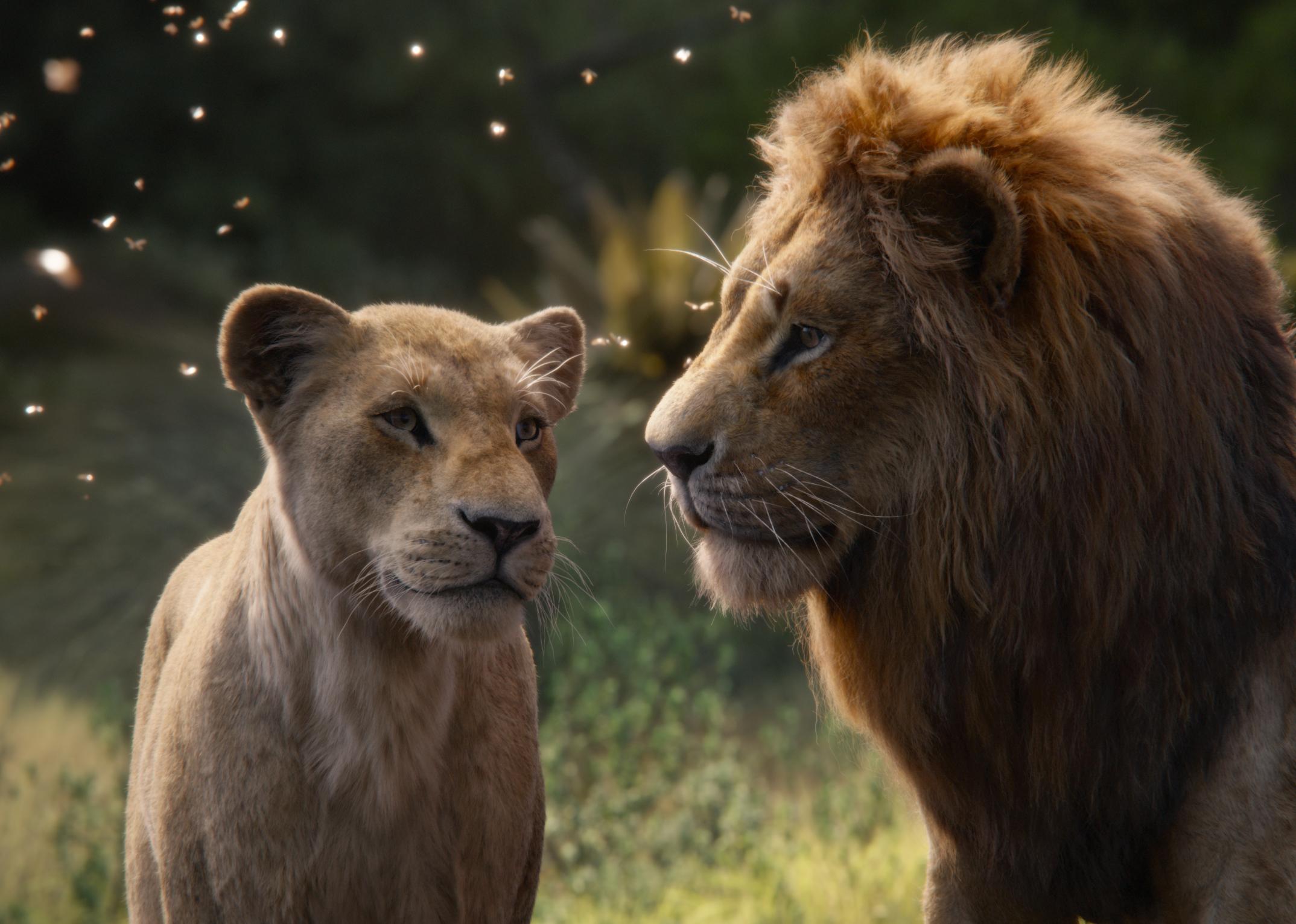nala e simba the lion king